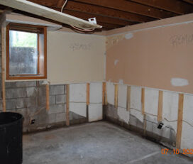Mold Squad – Water Mold Removal Fire Damage Insurance & Restoration Services mold inspection and testing Company