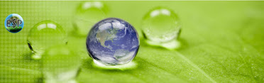 Environmental Services Provider